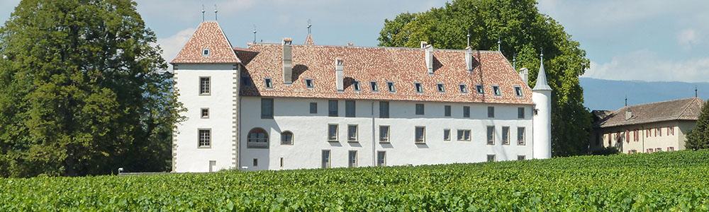 Bienvenue au Château d'Allaman